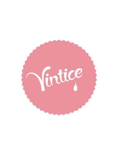 Vintice-1